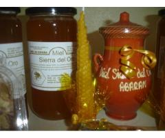 Miel Sierra del Oro
