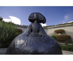 El Museo al Aire Libre de Ceutí