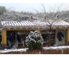 Finca Las Nieves